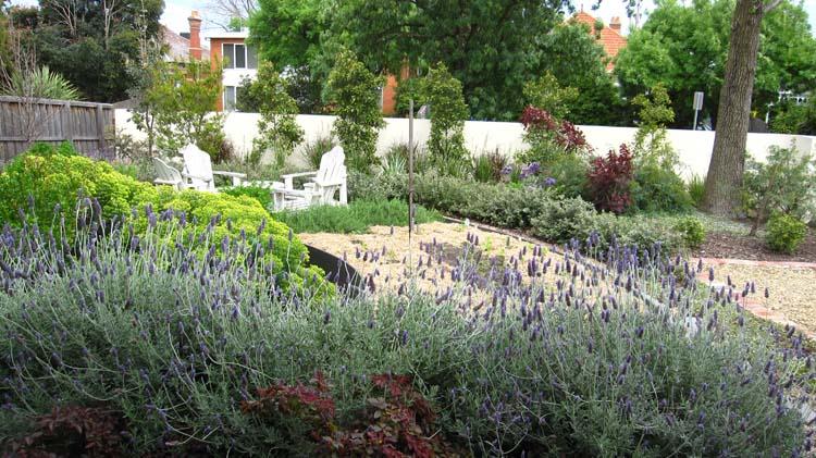 Elsternwick front yard arcadia sustainable design for Garden design jobs melbourne