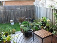 murrumbeena-small-courtyard-garden-before