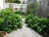 murrumbeena-small-garden-after