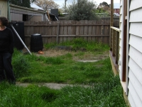 northcote-garden-before-4