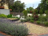 elsternwick-front-veggie-garden-after