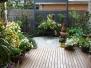 Murrumbeena Garden