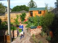 northcote-garden-after-3a