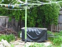 northcote-garden-before-1