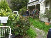 northcote-garden-before-6