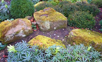 A natural arrangement of rocks create a relaxed informal garden